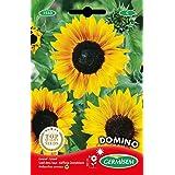Germisem Domino Semillas de Girasol 2 g (EC1533)