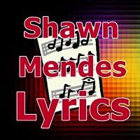 Lyrics for Shawn Mendes