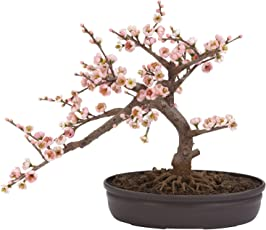Nearly Natural 4764 Cherry Blossom Bonsai Silk Tree, Pink