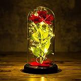Yuning Kit de Rosas La Bella y la Bestia, Rosa de Seda roja con luz LED, Elegante Cúpula de Cristal con Base Pino para la dec