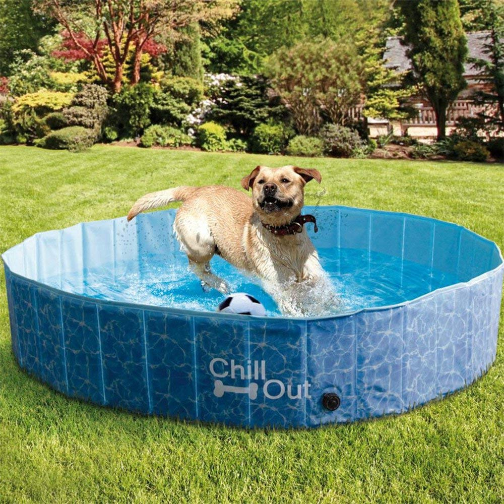 ALL FOR PAWS Outdoor Extra Large Dog Swimming Pool (160 x 30CM),Portable Collapsible Pet Bathing Tub, Anti-Slip, UV Test Approved, Great for Dogs and Kids