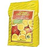 Vi rekommenderar Dell'Esperto citrus organiska gödselmedel speciellt för agrumi, 5 kg