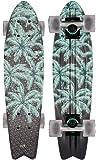 Globe Skateboard Graphic Bantam ST