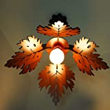 US DZIRE - THE BRAND OF LIFESTYLE Ceiling Light
