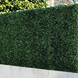 Privacy Fences - Best Reviews Guide