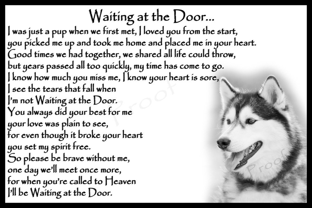 Siberian Husky Pet Dog Sympathy Memorial Fridge Magnet card – Waiting at the Door