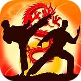 Kung Fu Fighting Pro