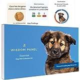 Wisdom Panel Essential Verbesserter Hunde-DNA-Test für Abstammung, Merkmale und medizinische Komplikationen