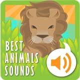 Meilleurs sons des animaux
