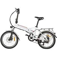 Speedrid Elektrofahrrad E-Bike 20/26/27.5 Zoll Elektrisches Fahrrad mit 36V 8Ah/10Ah/12.5Ah Lithium-Batterie, 250W…