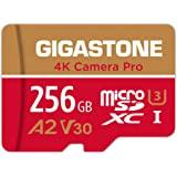 Gigastone Carte Mémoire 256 Go 4K Caméra Pro Série, Compatible avec Switch GoPro Dashcam, Vitesse de Lecture allant jusqu'à 1