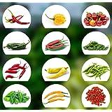 Chili Seed Set | 12 variedades de semillas de chile desde picante a suave | Set de cultivo con Chili Premium- Semillas natura