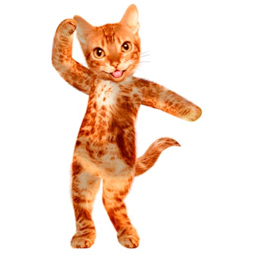Tanzen sprechende Katze - Hören Diagramm
