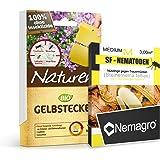 Nemagro KOMBIPACK gegen Trauermücken SF-Nematoden M + Naturen® Gelbtafeln - Für 15 Pflanzen