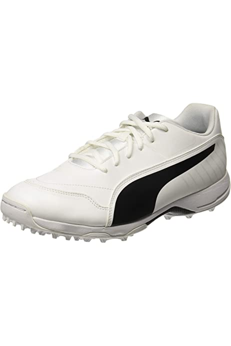 Buy PUMA Men's Evospeed One8 R White