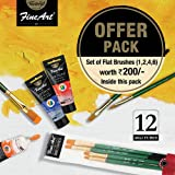 Pidilite Fevicryl Fine Art 40ML x 12U Artists Range Water Based Professional Acrylic Colour Tube for Painting on Canvas Assor