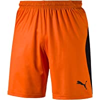 PUMA Liga Shorts Pantaloncini Uomo