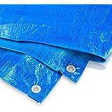 Bradas PL2/3 dekzeil 2 x 3 m, 60 g, blauw