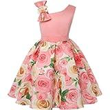 Cichic Girls' Party Dress 2-10 Years Flower Wedding Dress Elegant Formal Dress