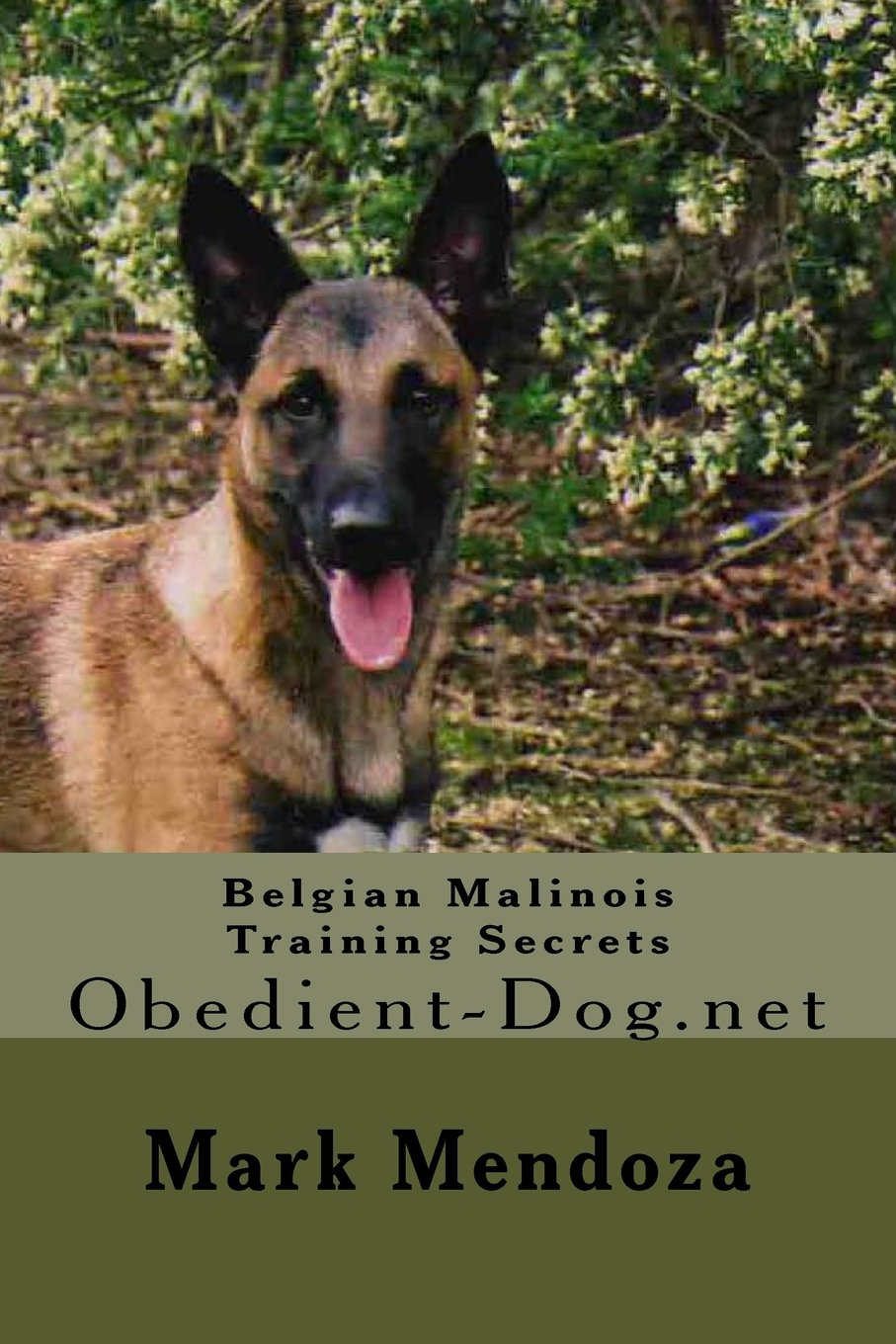 Belgian Malinois Training Secrets: Obedient-Dog.net