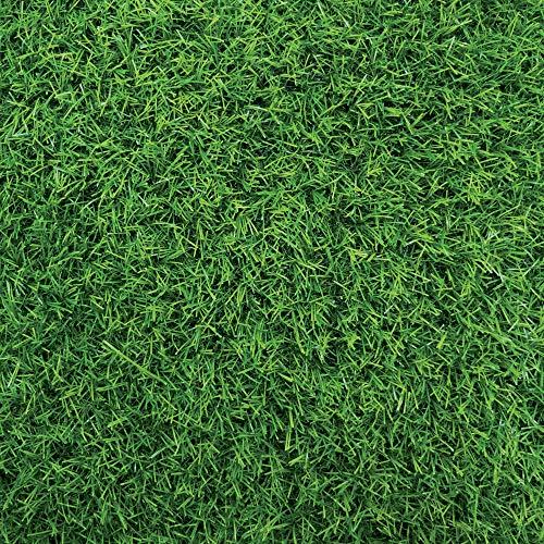 tenax Special Mat Sintetico, Prato Artificiale, Verde