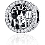 Annmors Charms Family Love Heart Dangle Charm for Bracelet 925 Sterling Silver Love Bead Charms with Cubic Zirconioa Jewelry