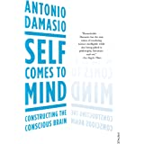 Self Comes to Mind: Constructing the Conscious Brain (English Edition)