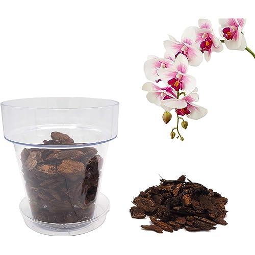 Bloome Kit per Rinvasare Le Orchidee: Vaso Trasparente con Fori drenaggio, Sottovaso e Terriccio specifico per Orchidee - Diametro 14 cm