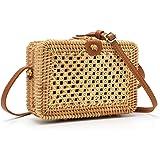 SOOHAO Handvävd rottingväska, sommarstrandväska, liten handgjord handväska, kvinnors vintage sugrör crossbody väska, bohemisk