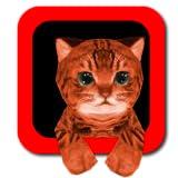 Katzen Simulator 3D