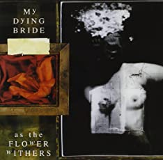 As the Flower Withers/Digi