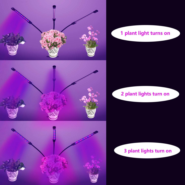 Tête De Mixmart Spectre Triple Lampe CroissancePlante shQCtrd