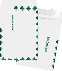 Business Source DuPont Tyvek 1st Class Envelopes (65860)