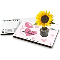 Eco-Postcard   Biglietto d'auguri Festa della Mamma con semi di Girasole   Regalo ecologico crescita pianta di Girasole