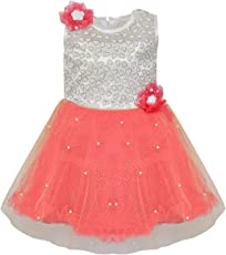 Wish Karo Girl's Net Frock