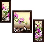 Indianara 3 Piece Set Of Framed Wall Hanging Art Print