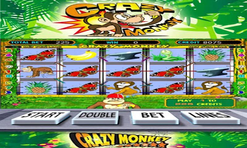 Андроид для пати казино