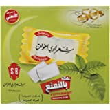 Shaarawi Bros Peppermint Flavor Chewing gum, 2.9 gm (Pack of 100)