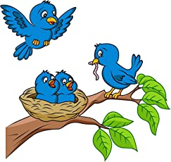 D&Y Birds and Nest Wall Decal/Sticker (70cm X 50cm)