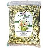 JiMMy Oat Hay Premium Select for Rabbit, Guinea Pig & Hamster 400 Grams