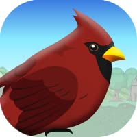 Bird Trip for Kindle fire