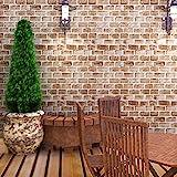Amazon Brand - Solimo PVC Self-Adhesive WallPaper, 3D Bricks, 45 x 500 cm