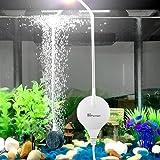 CHIALSTAR Super Mini Pompe électromagnétique d'air Ultra-silencieuse, Pompe à oxygène d'Aquarium