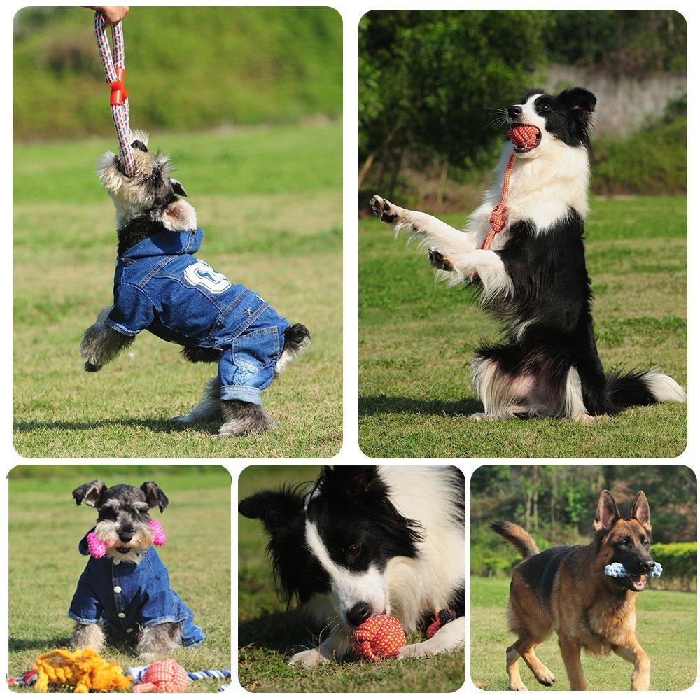 609eab73db58e0 RoyalCare Giocattoli per cani 12 pacchetti Set regalo, corda a sfera ...