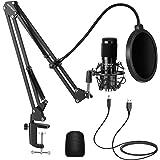 Neewer Kit di Microfono a USB Supercardioide a Condensatore 192KHZ/24Bit con Braccio Boom e Supporto Antiurto per YouTube Vlo