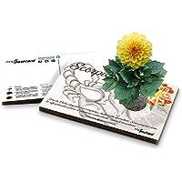 Eco-Postcard   Biglietto d'auguri segno zodiacale Scorpione   Regalo compleanno ecologico zodiaco con semi di Dalia…
