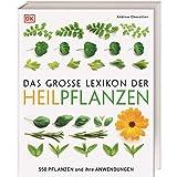 Das große Lexikon der Heilpflanzen: 550 Pflanzen und ihre Anwendungen