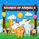 Rodeo Stampede: Sky Zoo Safari‏ animals sounds animal name and pictures Bird Sound