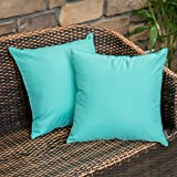 MIULEE Extérieur Housse de Coussin en Polyester Doux avec Surface Hydrofugfe Taie d'oreiller Décoratif Confortable pour Maiso