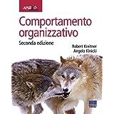 Comportamento organizzativo